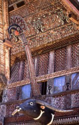 Geometrically incised decorations cover the entire front and gable sections of a traditional tongkonan. The carved buffalo head is a very typical representation found on most Torajan longhouses